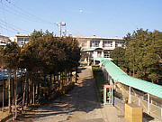 初声中学校1983〜1984年
