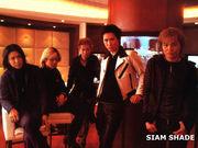 SIAM  SHADE/ACID