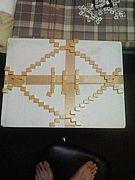 大王製紙 2010