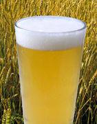 こんなビールが飲みたい!!