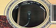 アコースティック楽器拡声装置