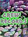 ◆Crew Records◆
