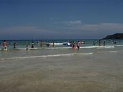 伊豆★☆白浜大浜海水浴場