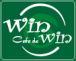 WinWinDartsClub