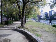 広島の川岸が好き