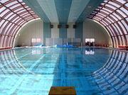船高水泳部