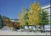 豊中市立西丘小学校