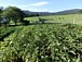 オーストラリアで農業しよう