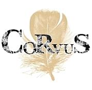 Corvus【カラス】