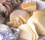 ♡チーズ族♡