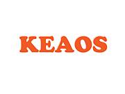 学生団体KEAOS