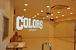 STUDIO COLORS