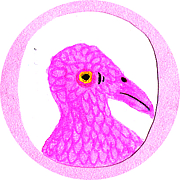 birdo space