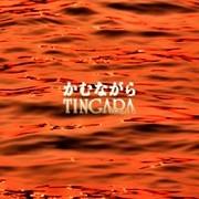 TINGARA [てぃんが〜ら]