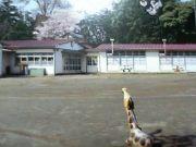 。慶元寺幼稚園。