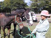 牧場めぐり・名馬探しの旅
