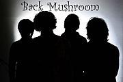 Back Mushroom