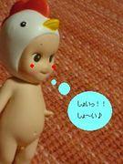 しょ〜い!の会☆
