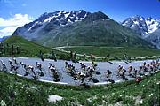 海外で自転車乗り レース情報