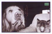 シアワセのあくび 写真展