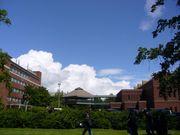 乗れる雲は必ずある!