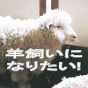 羊飼いになりたい!