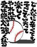 ☆東海地区大学ソフトボール☆