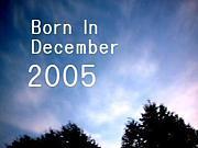 2005年12月生まれ