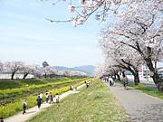 静岡県立大学 2011年度 新入生