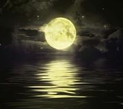 太陽よりも月になりたい。