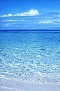 綺麗な海が好き