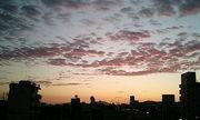 岡山の空を見る人