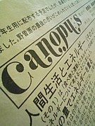 Canopus@安房理系