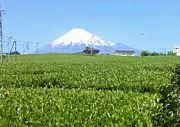 静岡県富士市 富士宮市が好き