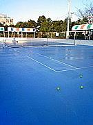 江戸川区・船橋市テニス