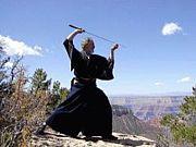 古武道 居合 剣術 柔術