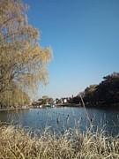 石神井公園走ろう会&歩こう会