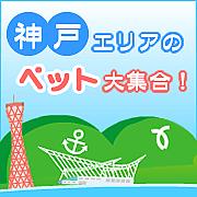 神戸エリアのペット大集合!