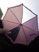 傘で飛べるはずが 風で壊れた