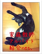 ◆家庭教師紹介net.◆