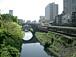 東京、ただ歩くのみ