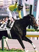 CLUB KEIBA(競馬)