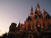 東京ディズニーランド行きたい!