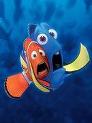 担任が魚類だ
