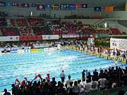 八代高校水泳部