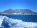 ケープタウン(Cape Town)