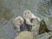 熊本の温泉Max大好き💕