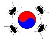 韓流ファンは日本の恥