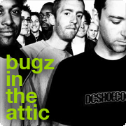 bugz in the attic