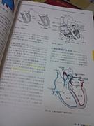 やっぱり心臓血管外科が好き